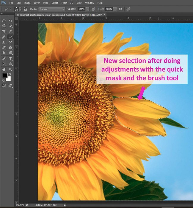 Screenshot of using the quick mask and brush tool Photoshop shortcuts