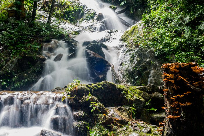 A beautiful outdoor natural light photo of a rushing waterfall