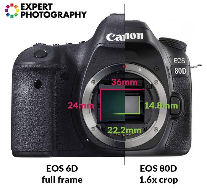 两个半相机机构,具有可见的全帧和裁剪传感器,其尺寸的差异标记为线条和数字