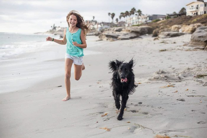 A sweet family beach pictures shot of a young girl running on the beach with a dog