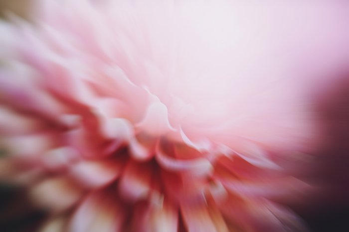 Artistic impressionist photography of a blurry pink flower