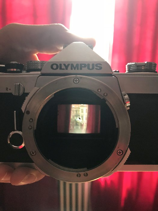 Light from the optical viewfinder of my OM-1 forms this image on the mirror.