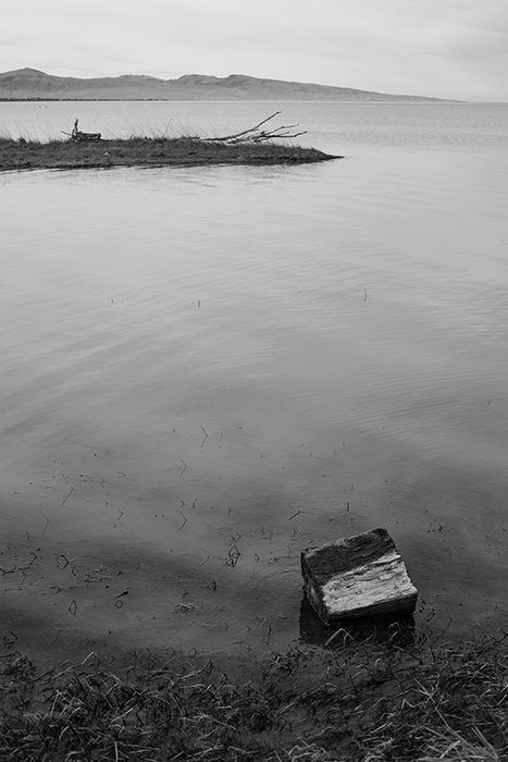 Te Waihora (Lake Ellesmere) in Canterbury, New Zealand. Black and white photography tips