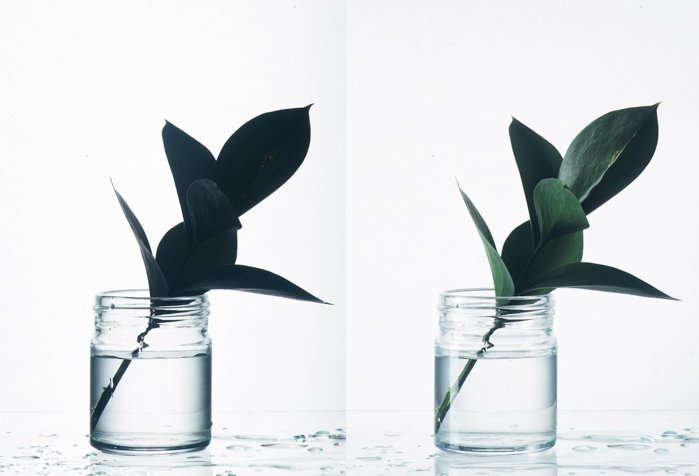 Glass photography diptych comparing photos shot with and without another light source