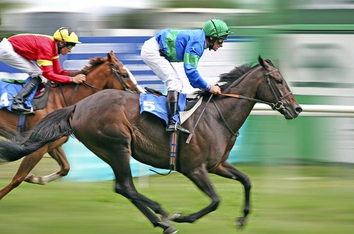 An action shot of race-horsing