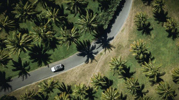 An aerial view of a car driving through a green landscape