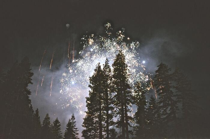 Photo of fireworks exploding above a forest