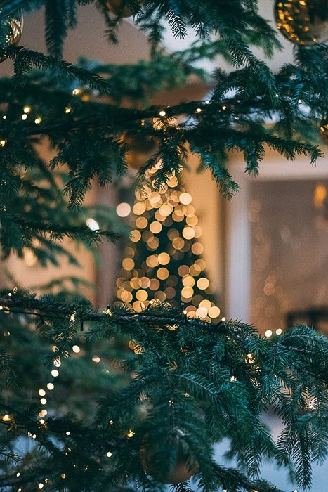 A christmas tree with beautiful bokeh effect background
