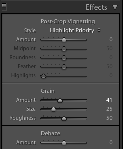 A screenshot showing how to use the effects panel to achieve the Film Photography look