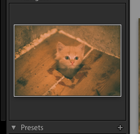 Saving a preset for a film photography look in Lightroom