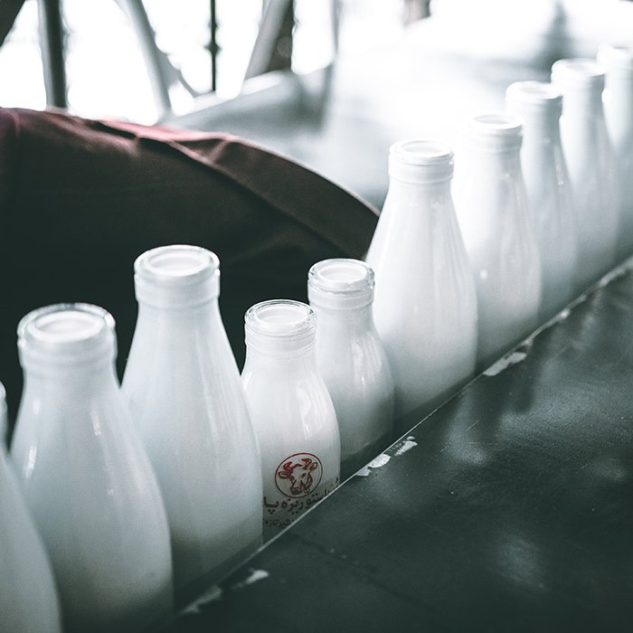 A row of different sized milk bottles
