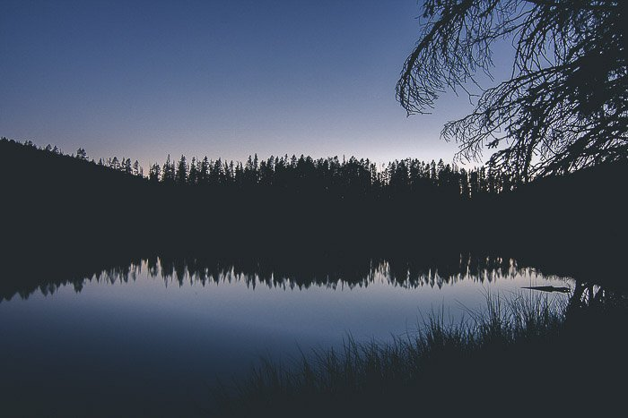 Beautiful low light reflection photography of silhouettes of trees over and reflecting in a lake