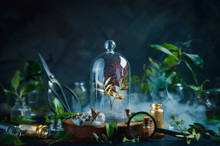 A magical still life composition highlighting use of contrasting colours in photography