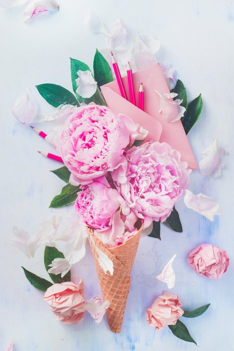 A bright and airy flatlay of pink roses in an ice-cream cone