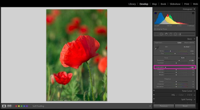 Screenshot showing how to fix an underexposed photo in Lightroom