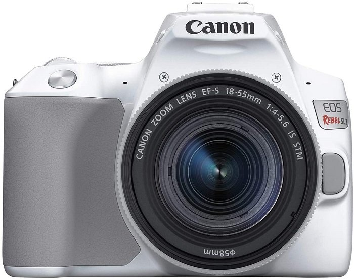 Canon Rebel, one of the best entry level dslr cameras