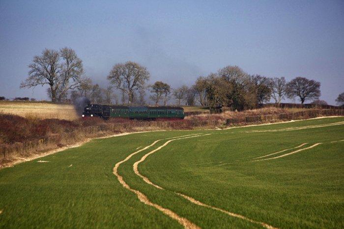 A steam train driving through a luscious green countryside