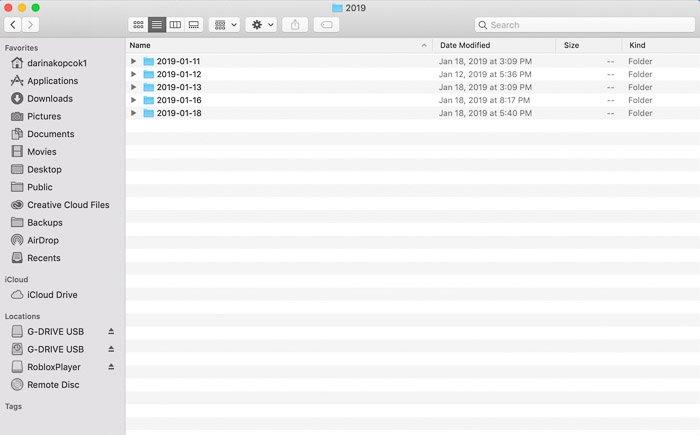 显示如何在lightroom文件夹结构中组织照片的屏幕截图