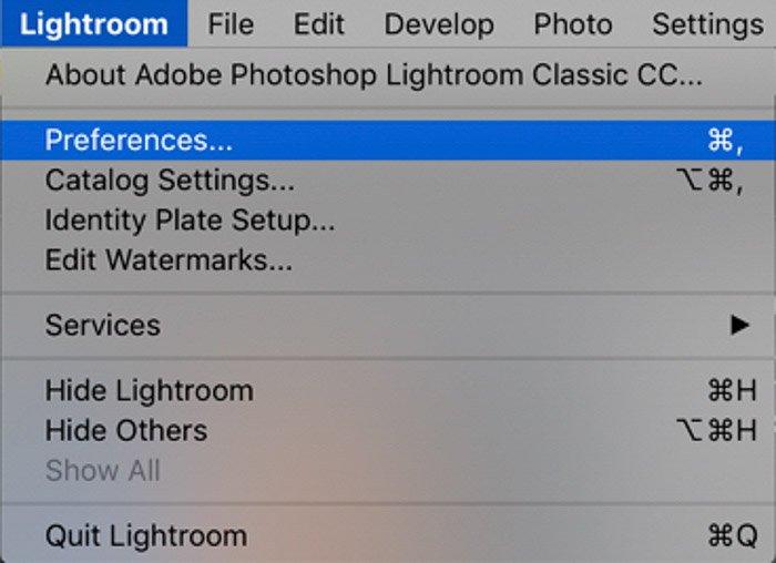 屏幕截图显示如何在Lightroom组织照片