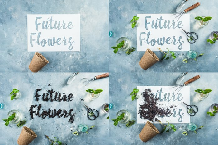 A creative still life grid with a flower theme - examples of typography