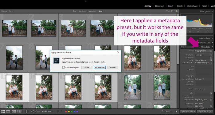 A screenshot showing how to apply metadata in lightroom