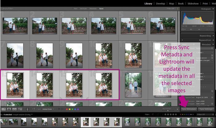 A screenshot showing how to sync metadata in lightroom