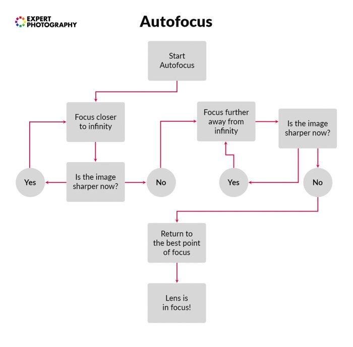 A flowchart explaining the autofocus process - camera lenses
