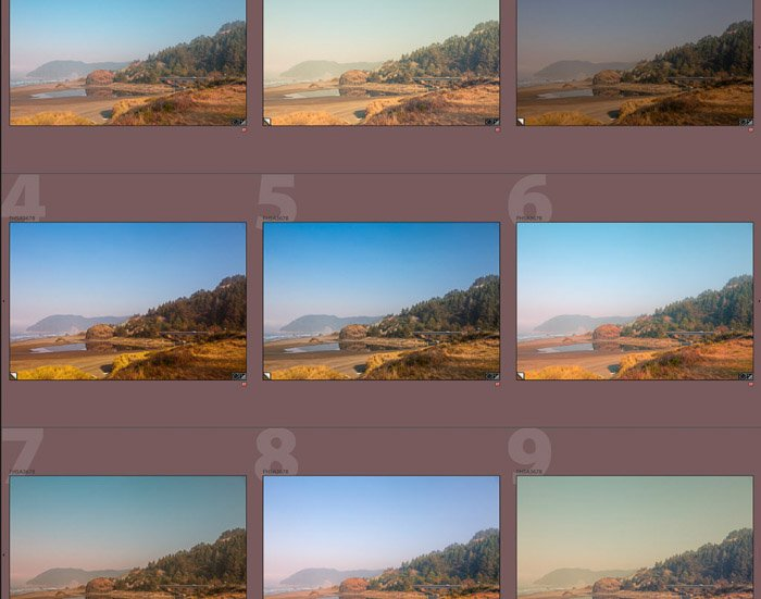 A screenshot of editing an instagram photo on Lightroom - the same photo with 9 different presets applied.