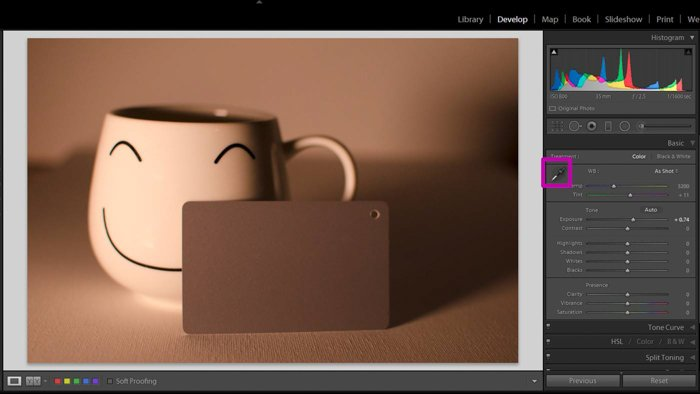 A screenshot showing how to use a grey card for color correction in Lightroom - select eyedropper tool