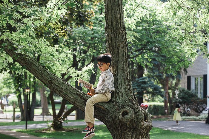 An outdoor porttrait of a young boy sitting in a tree - family photo ideas for inspirations