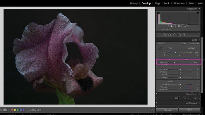 在Lightroom的阴影和黑色工作的屏幕截图 - 曝光滑块