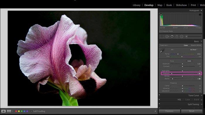 显示如何使用Lightroom阴影和黑色滑块进行更好控制的屏幕截图
