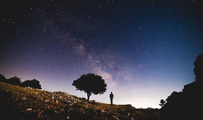 The silhouette of a tree and person under a starry sky, using gestalt theory of segregation as a composition tool