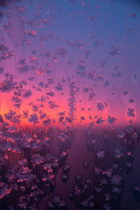 Dreamy photo of pink and purple light behind patterned glass