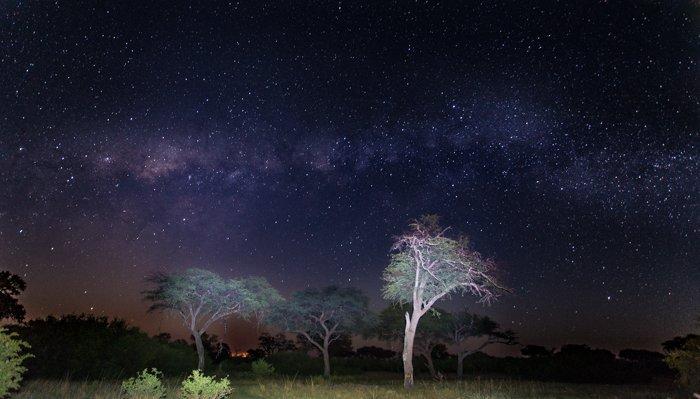 Stunning night landscape at camp in the Okavango Delta, Botswana. Safari pictures