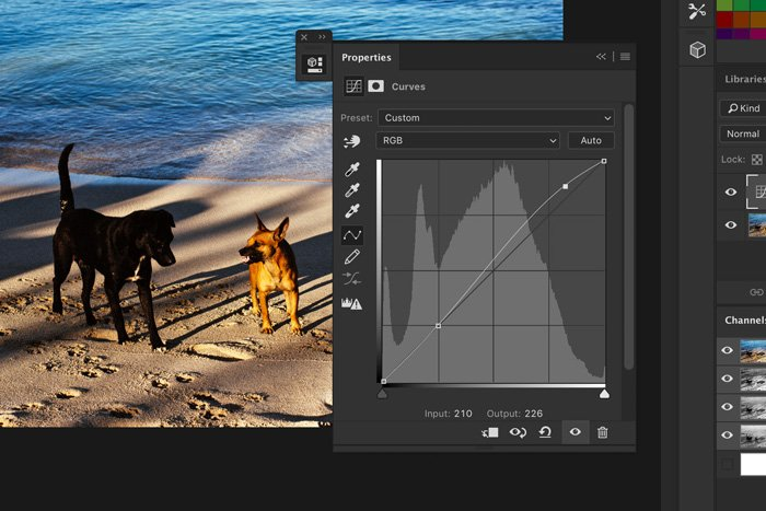 A screenshot of how to drag anchor points in Photoshop
