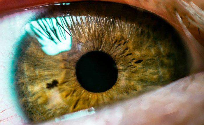 A macro photo of a brown eye