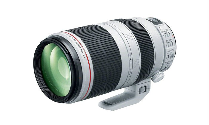 Image of the Canon 100-400mm IS II