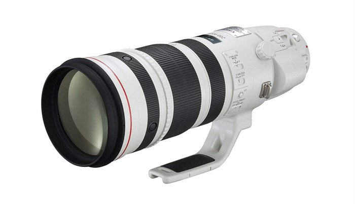 Image of the Canon 200-400mm f/4L IS USM Extender 1.4x super-telephoto zoom lens