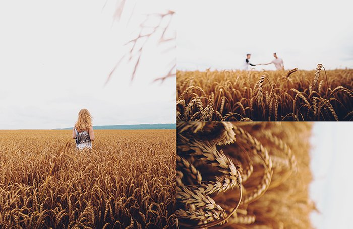 A triptych photography example featuring three views of a person posing in a cornfield