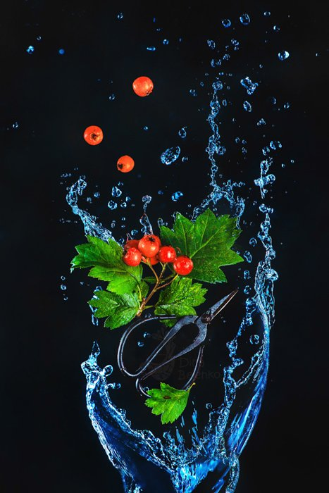 A creative food photography shot of falling berries and water splash