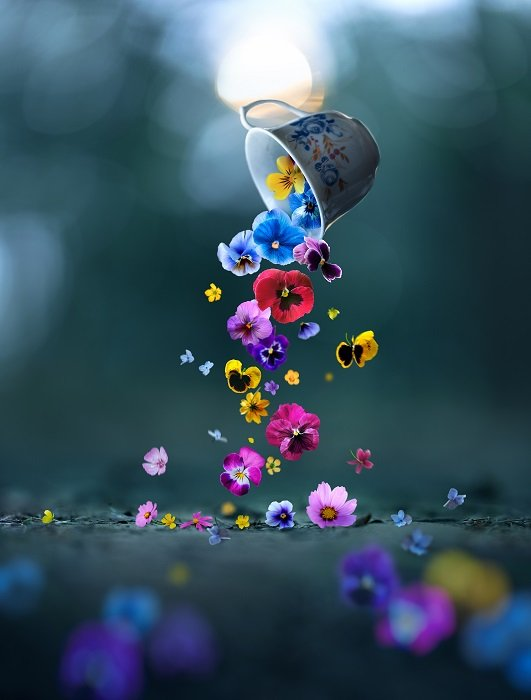 a conceptual still life photo with flowers
