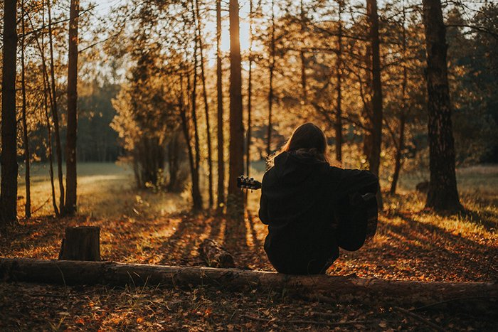 Silhouette of a person sitting on a log in an autumn forest