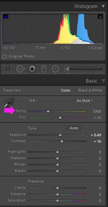 A screenshot of moving the Lightroom Temperature slider around to emphasize the warm colors