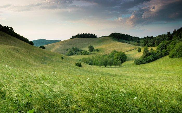 A lush landscape under a cloudy sky - color theory for landscape