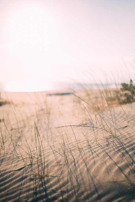 Serene low angle photo of a sandy beach on a clear day - beautiful photography principles