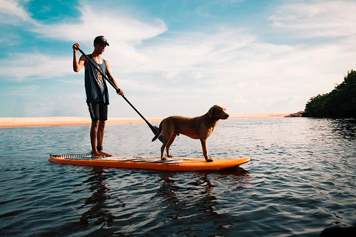 Stunning shot of a man paddling a canoe with a dog onboard - lifestyle portraits