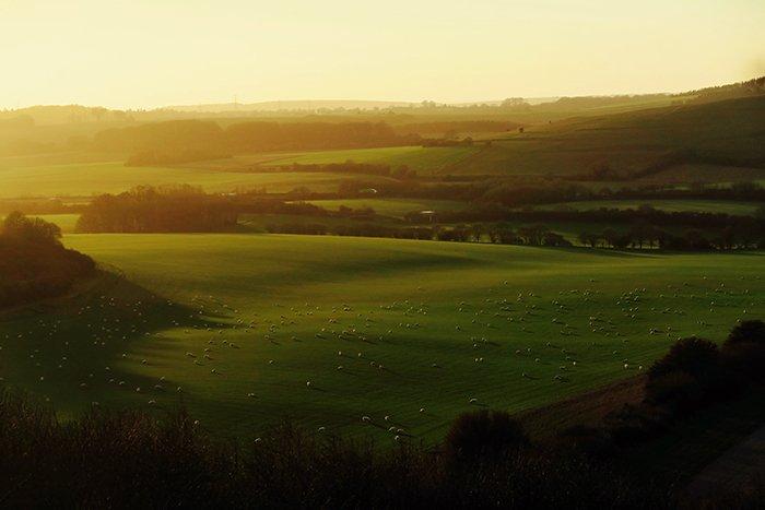 A luscious landscape shot shot in golden hour light
