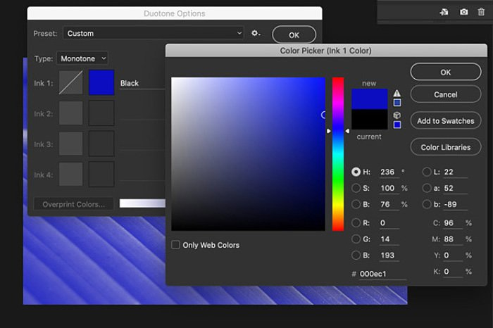 A screenshot of how to convert an image to black and white on Photoshop