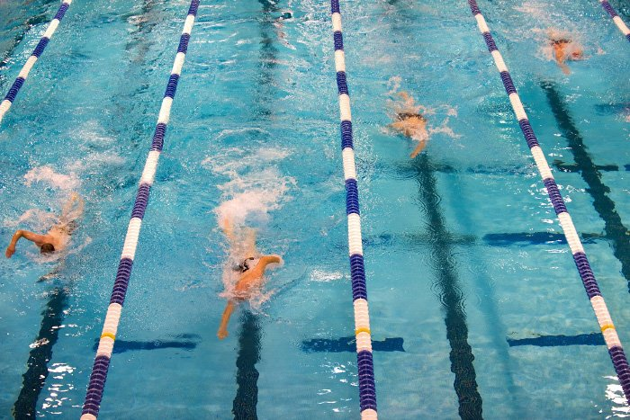 Overhead action shot of swimmers racing in a pool - how to take swimming pictures